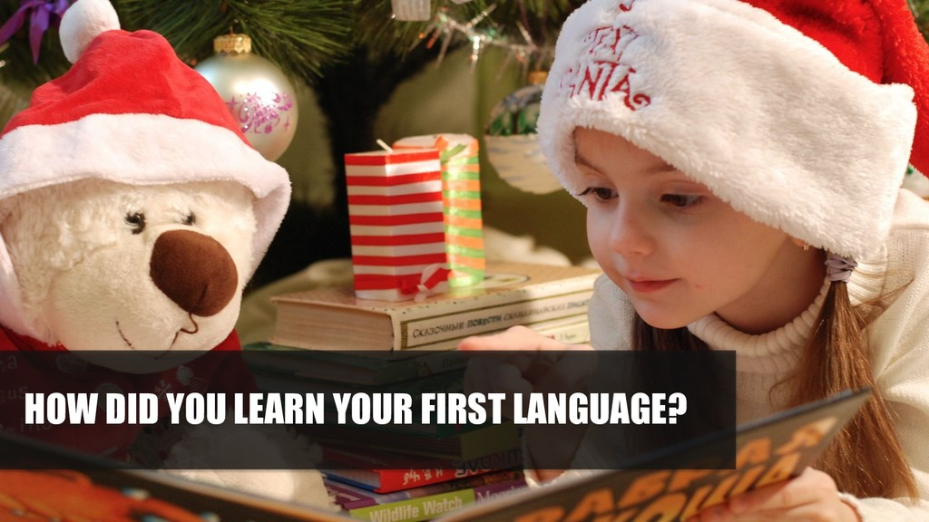 HOW DID YOU LEARN YOUR FIRST LANGUAGE?