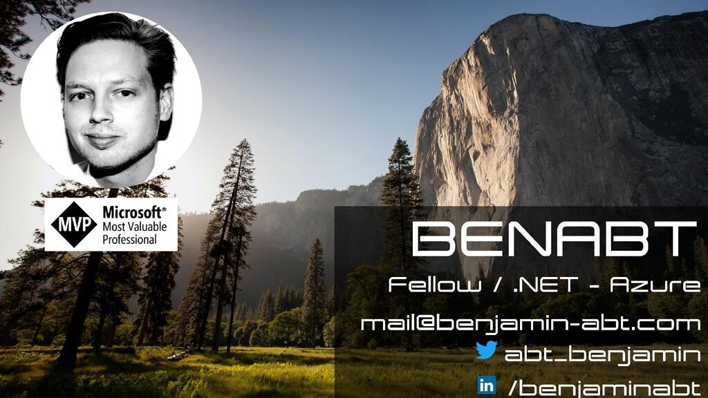 Technical Fellow / Executive Engineer ben.abt@e...