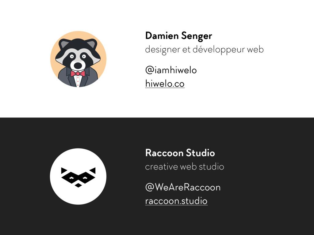 Damien Senger designer et développeur web @iamh...