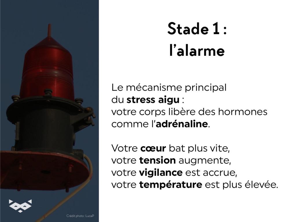 Stade 1 : l'alarme Le mécanisme principal  du ...