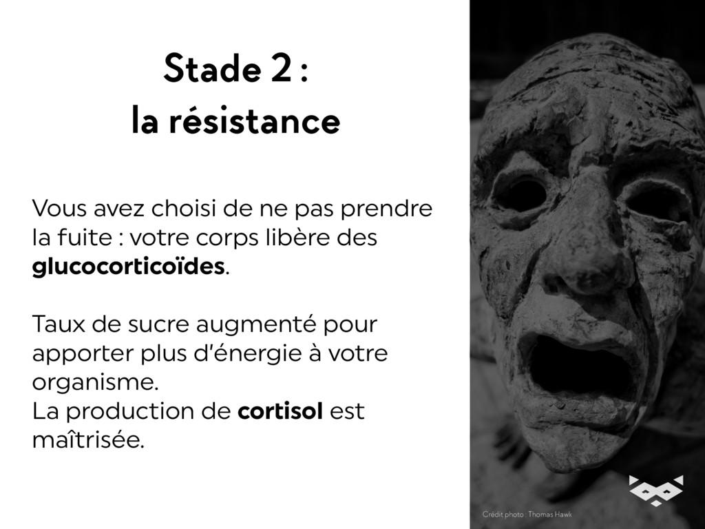 Stade 2 : la résistance Vous avez choisi de ne...