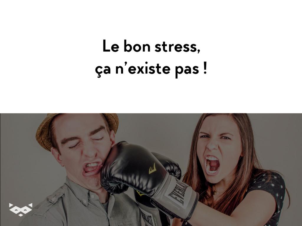 Le bon stress, ça n'existe pas !