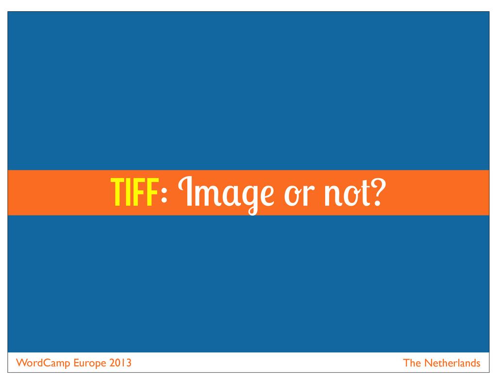 WordCamp Europe 2013 The Netherlands Tiff: I r ?