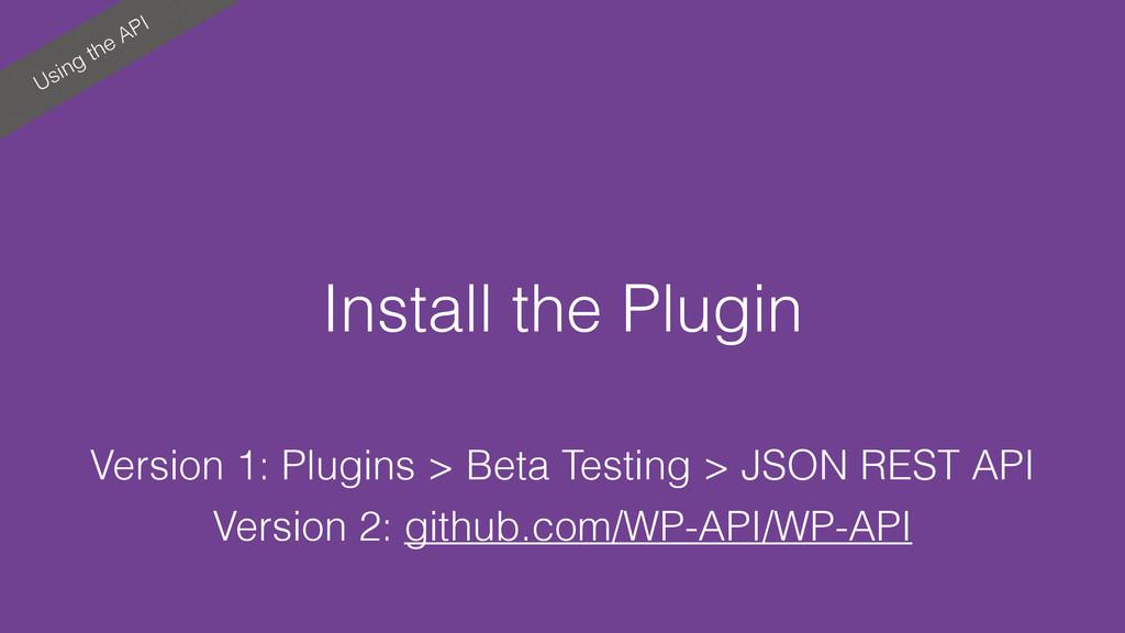 Using the API Install the Plugin Version 1: Plu...
