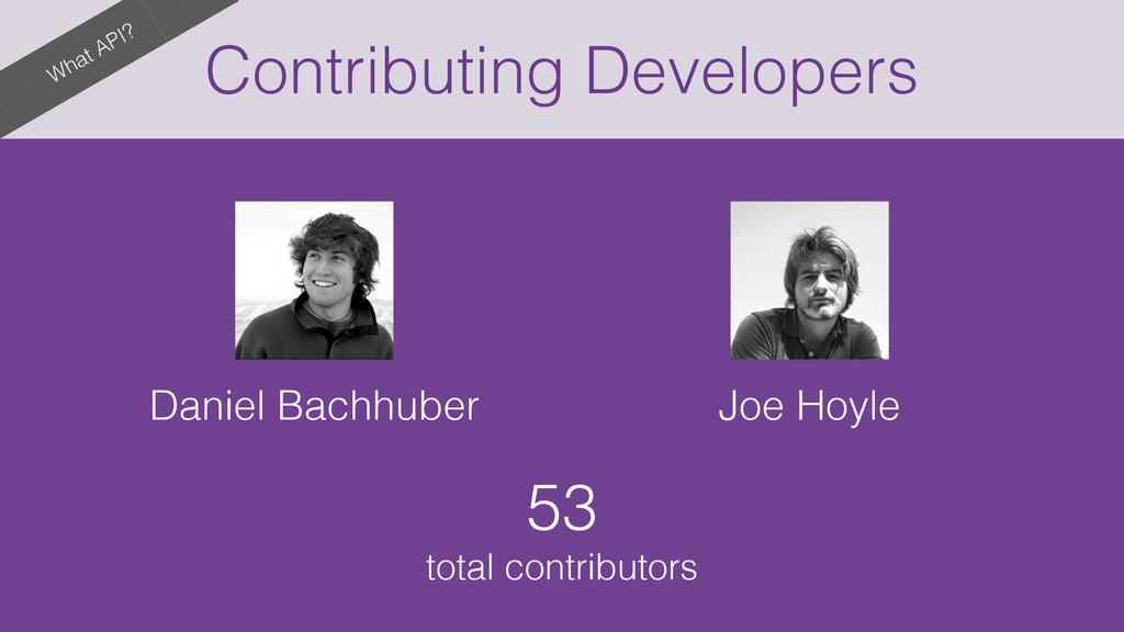 What API? Contributing Developers Daniel Bachhu...