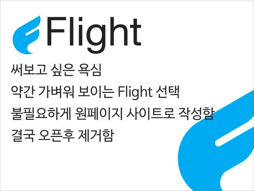 써보고 싶은 욕심 약간 가벼워 보이는 Flight 선택 불필요하게 원페이지 사이트로 ...