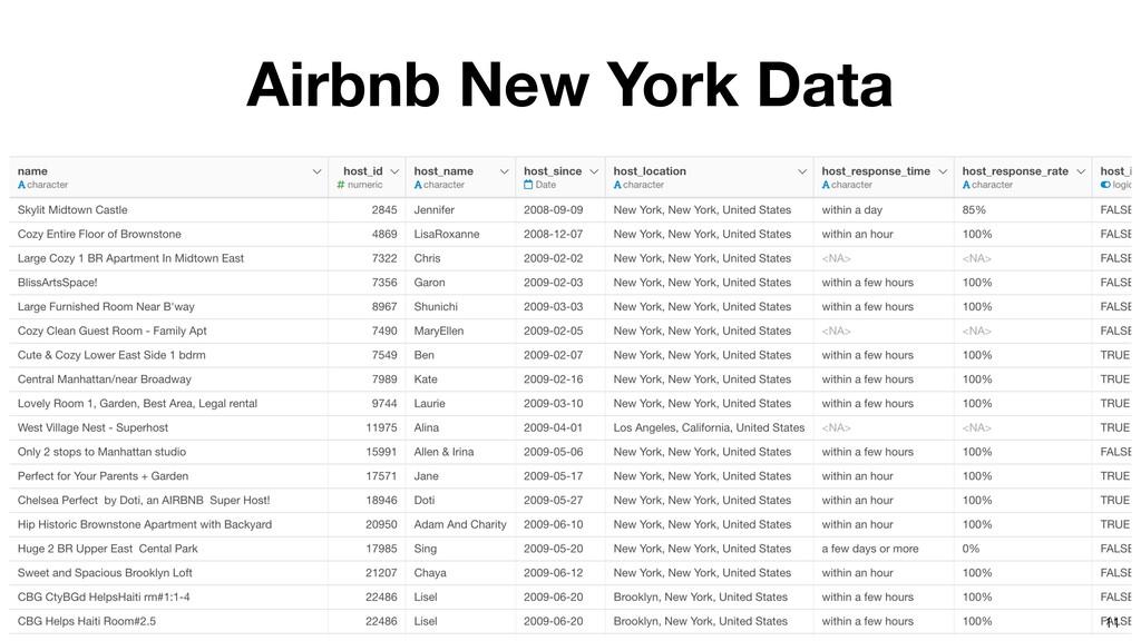 Airbnb New York Data 11