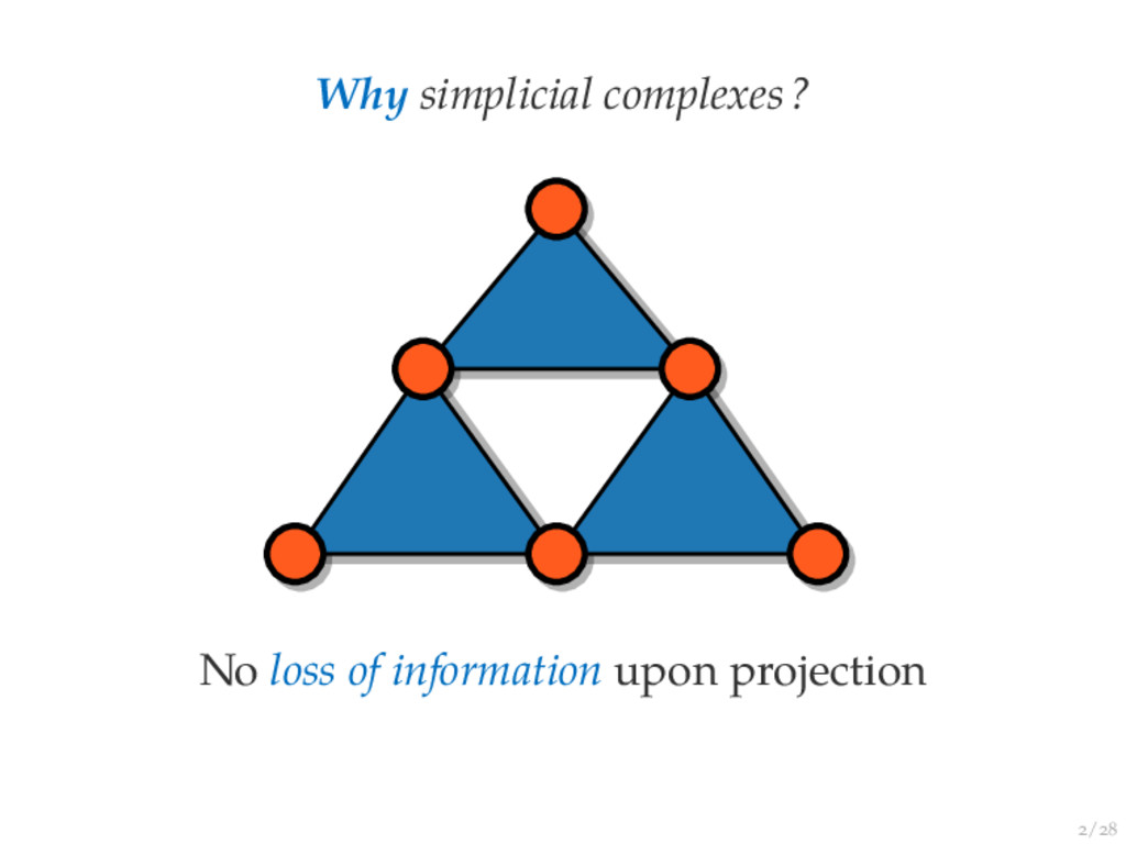 / Why simplicial complexes? No loss of informat...