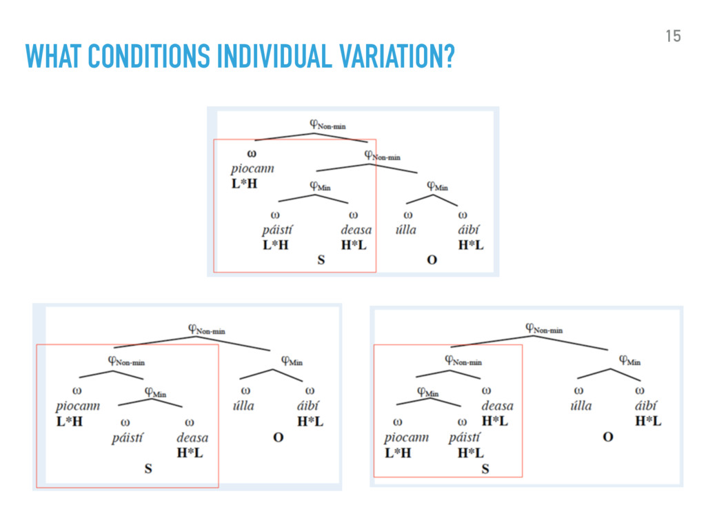 WHAT CONDITIONS INDIVIDUAL VARIATION? 15