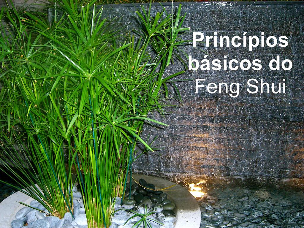Princípios básicos do Feng Shui