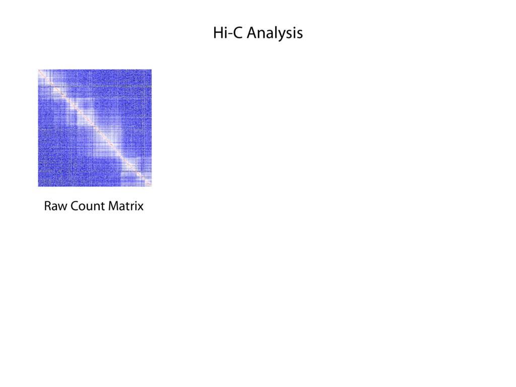 Hi-C Analysis Raw Count Matrix