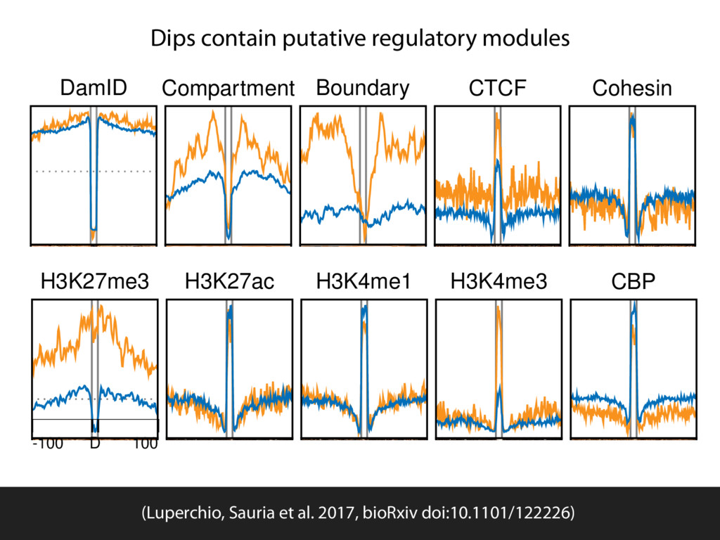 Dips contain putative regulatory modules H3K27m...
