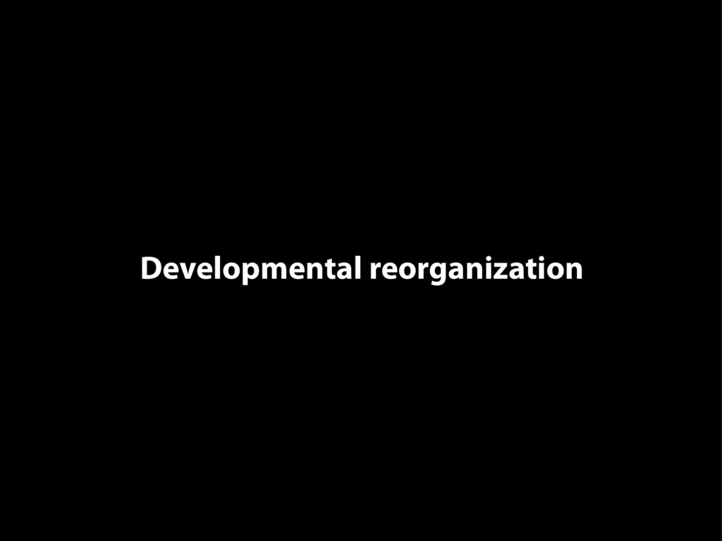Developmental reorganization