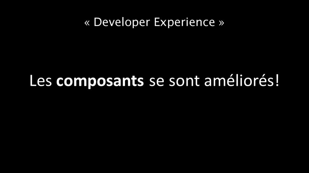 « Developer Experience » Les composants se sont...
