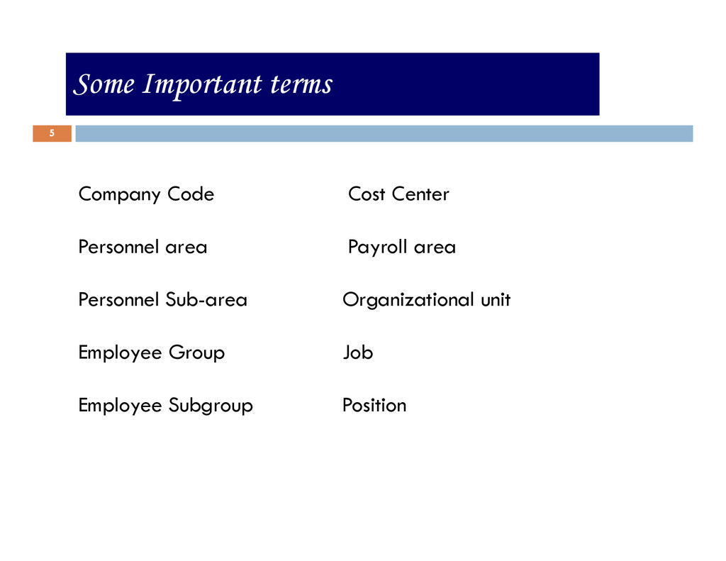 5 Some Important terms Company Code Cost Center...