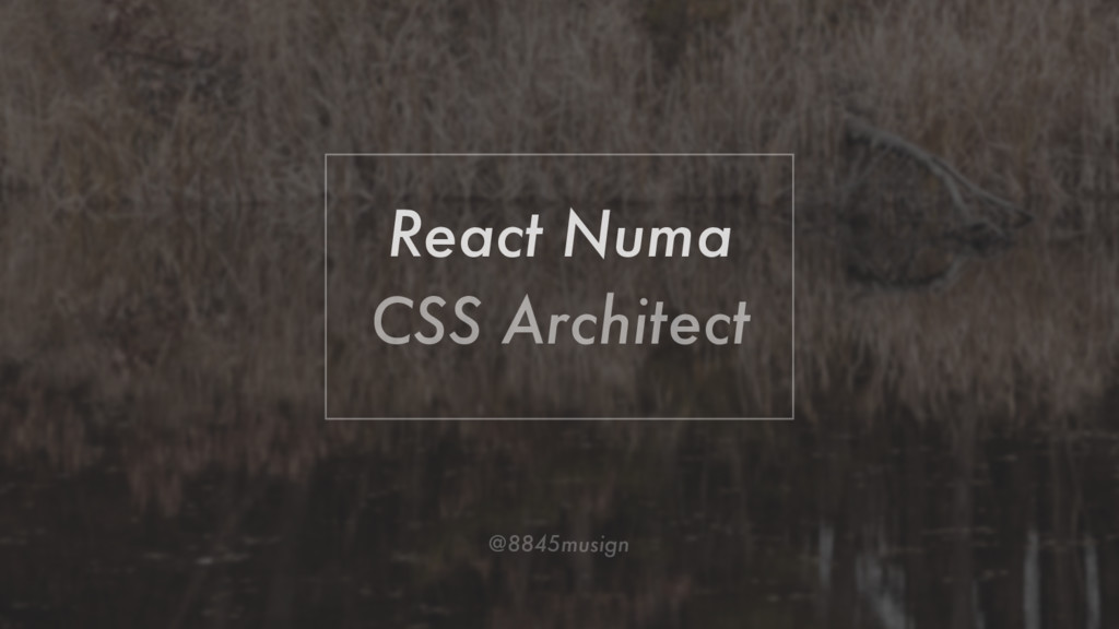 @8845musign React Numa CSS Architect
