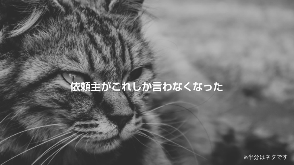 ґཔओ͕͜Ε͔͠ݴΘͳ͘ͳͬͨ ※ωλͰ͢
