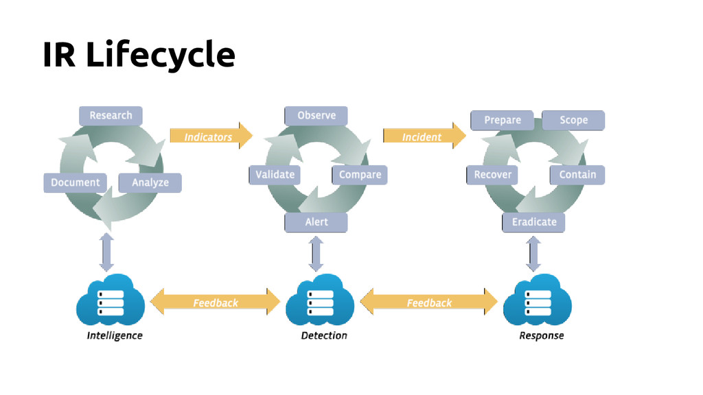 IR Lifecycle