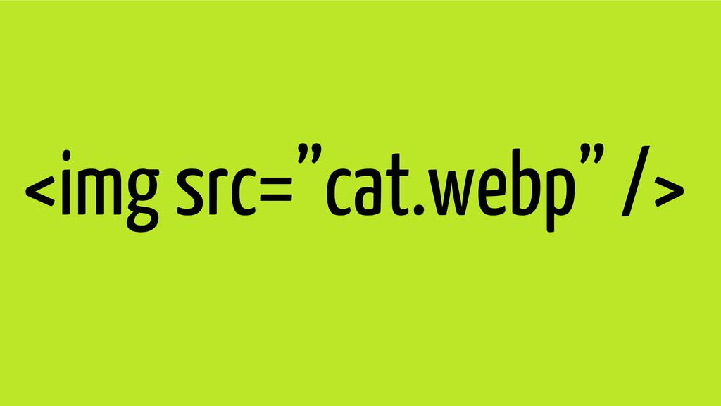 "<img src=""cat.webp"" />"