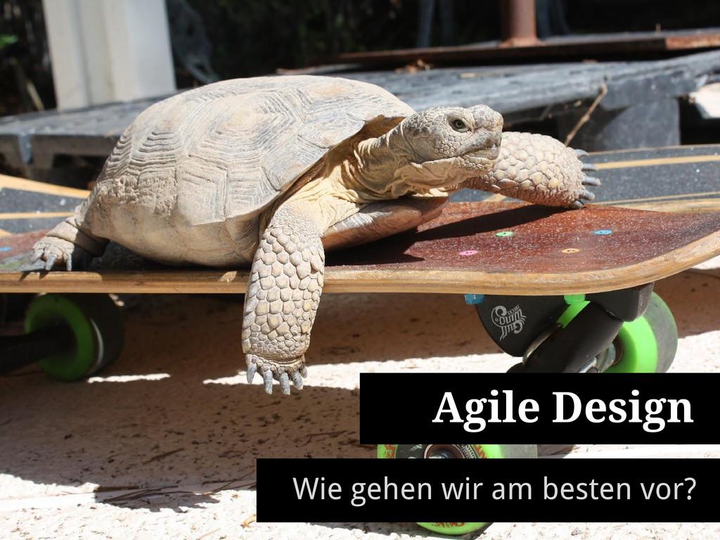 Agile Design Wie gehen wir am besten vor?