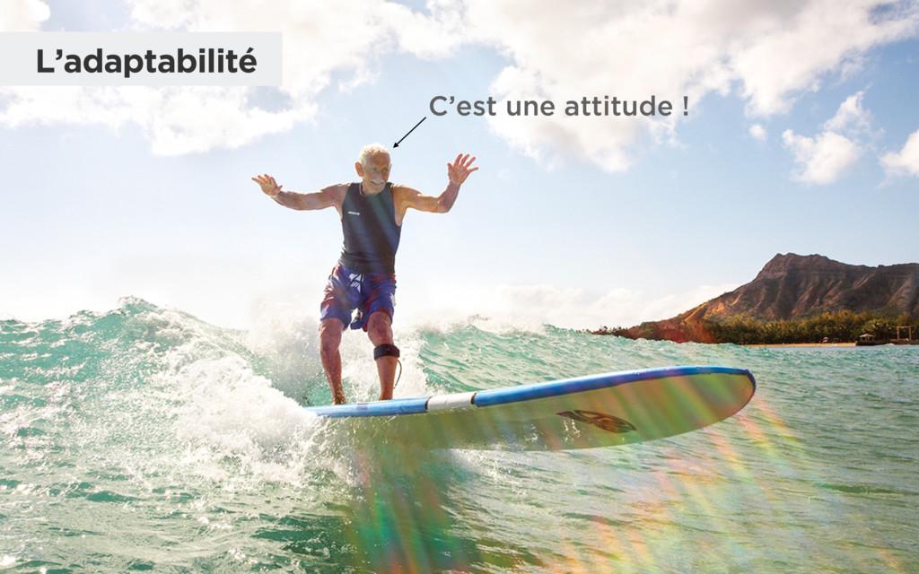 C'est une attitude ! L'adaptabilité