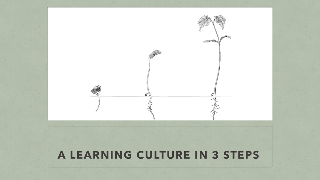 A LEARNING CULTURE IN 3 STEPS
