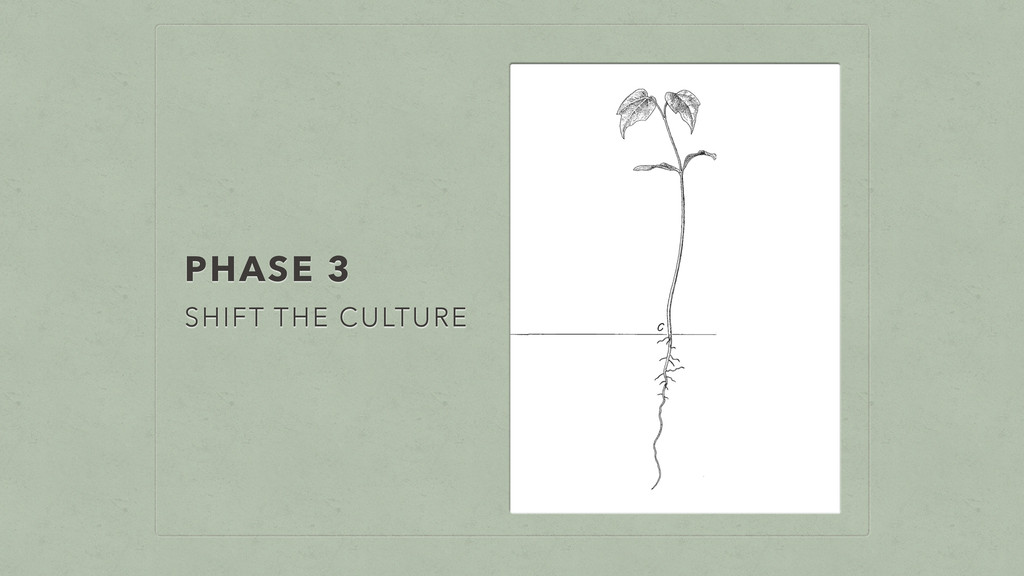 PHASE 3 SHIFT THE CULTURE