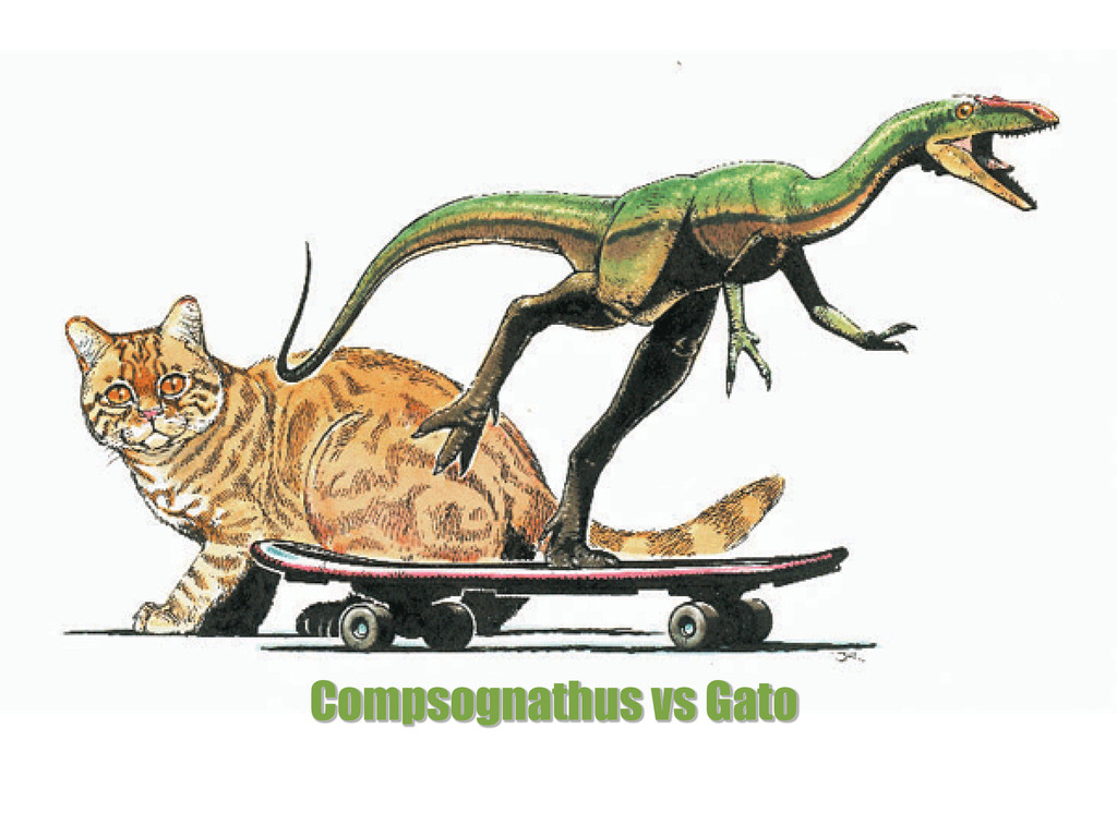 Compsognathus vs Gato