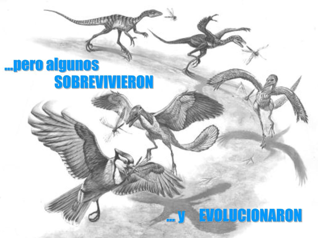 …pero algunos SOBREVIVIERON … y EVOLUCIONARON