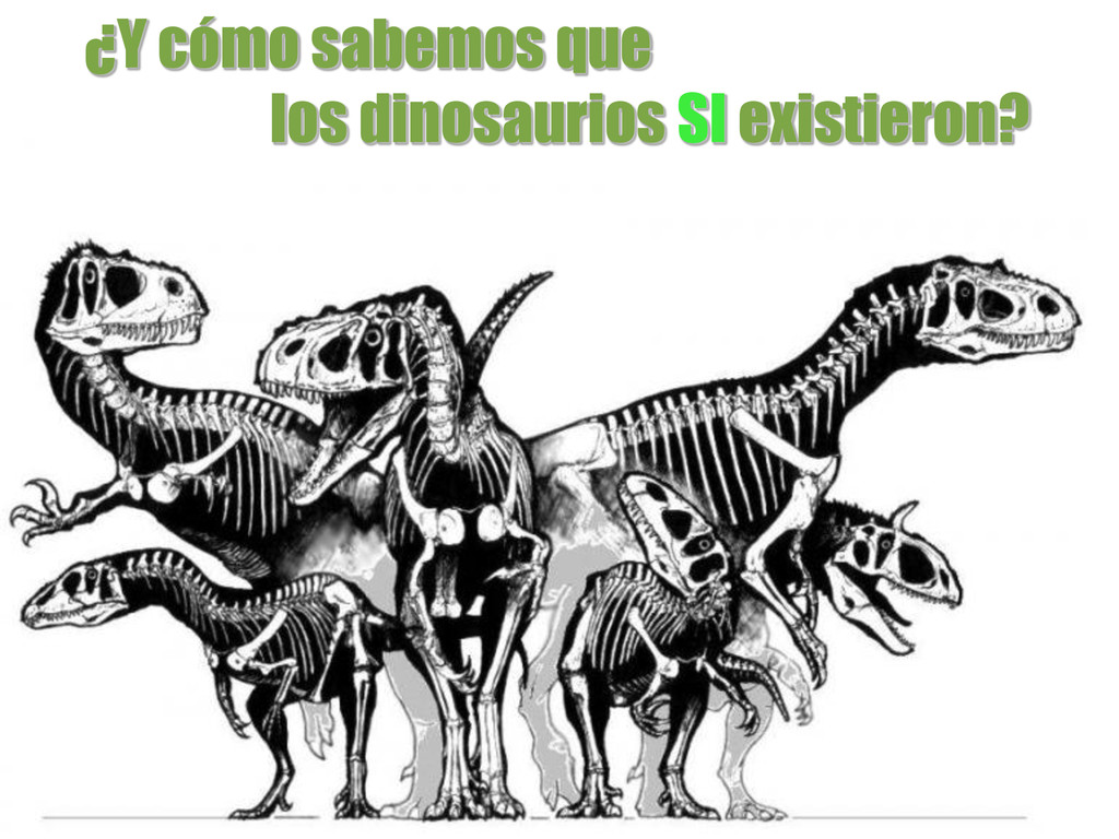 ¿Y cómo sabemos que los dinosaurios SI existier...