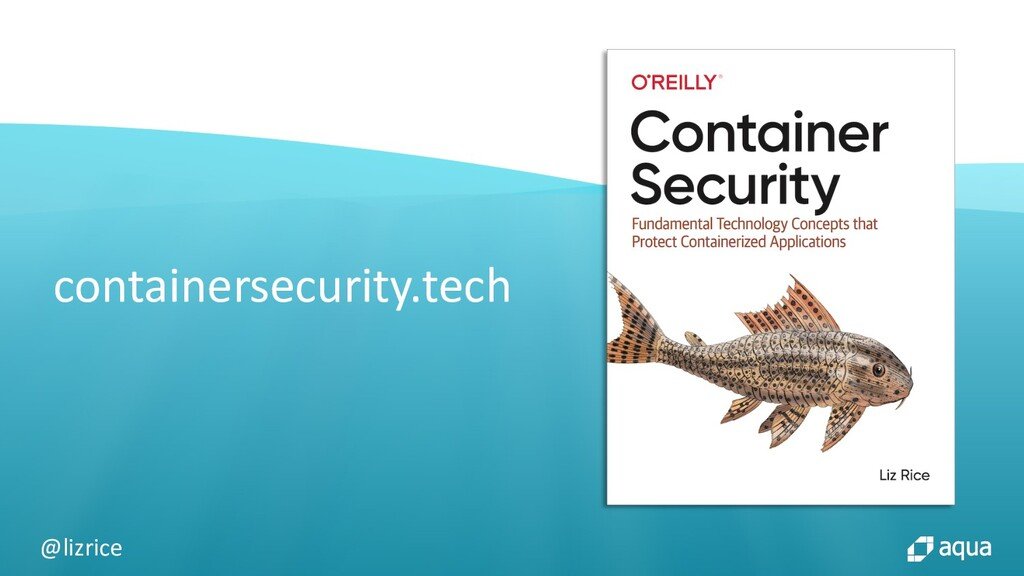 @lizrice containersecurity.tech