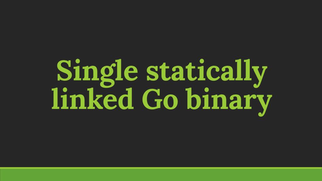 Single statically linked Go binary