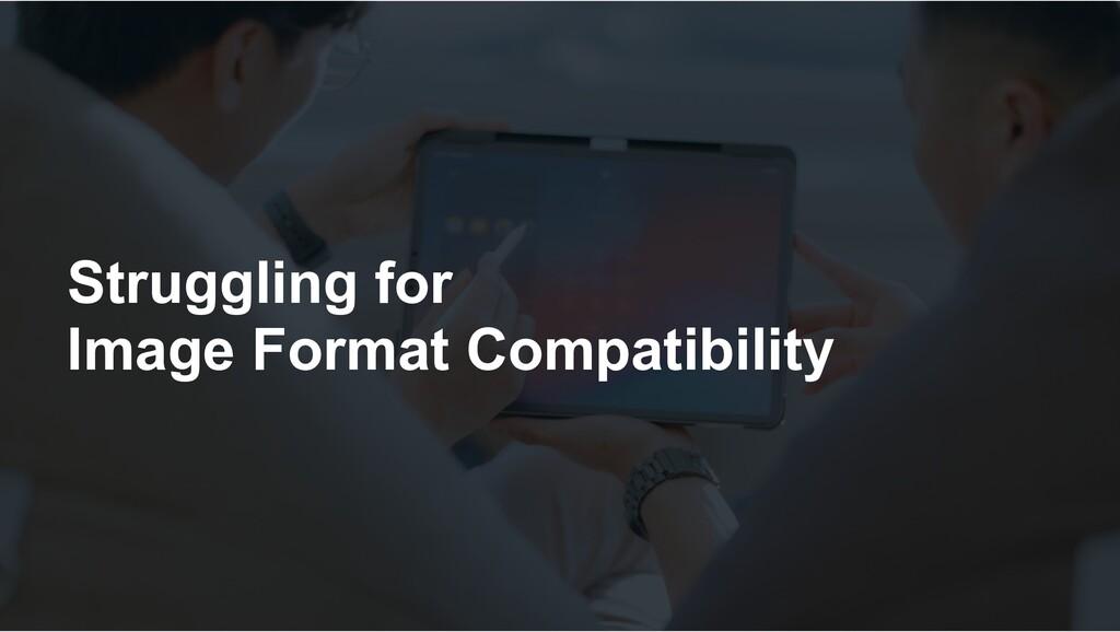 Struggling for Image Format Compatibility