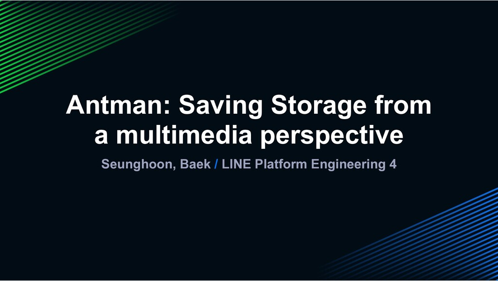 Antman: Saving Storage from a multimedia perspe...