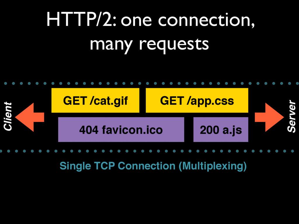 GET /cat.gif GET /app.css 200 a.js HTTP/2: one ...