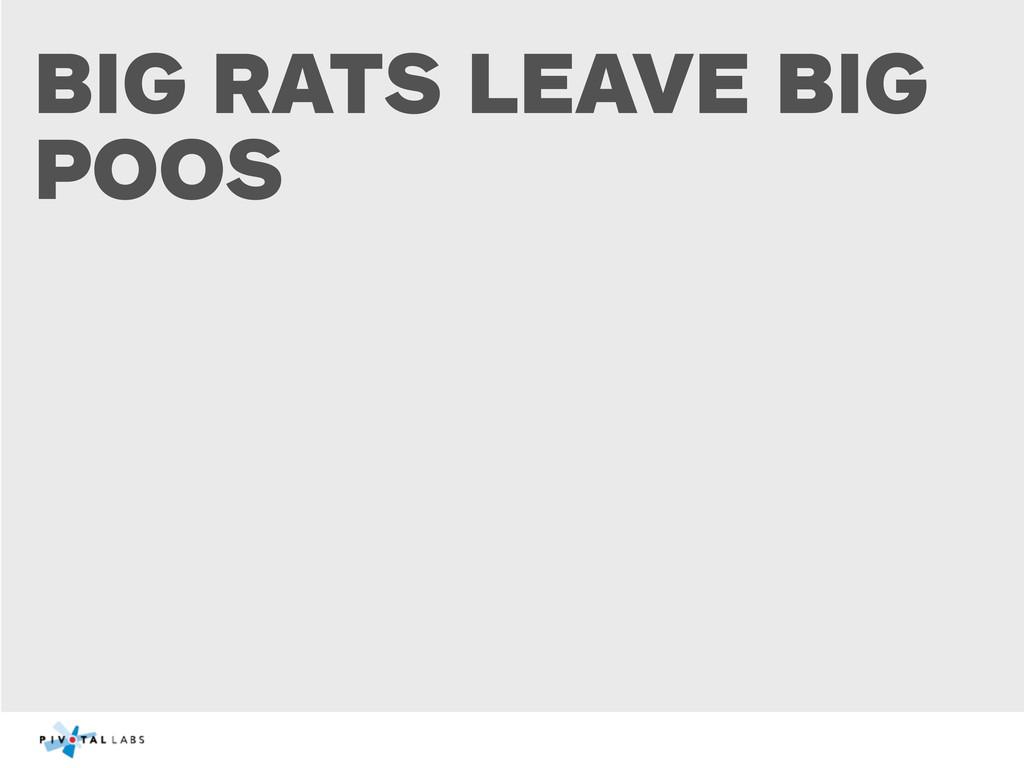 BIG RATS LEAVE BIG POOS