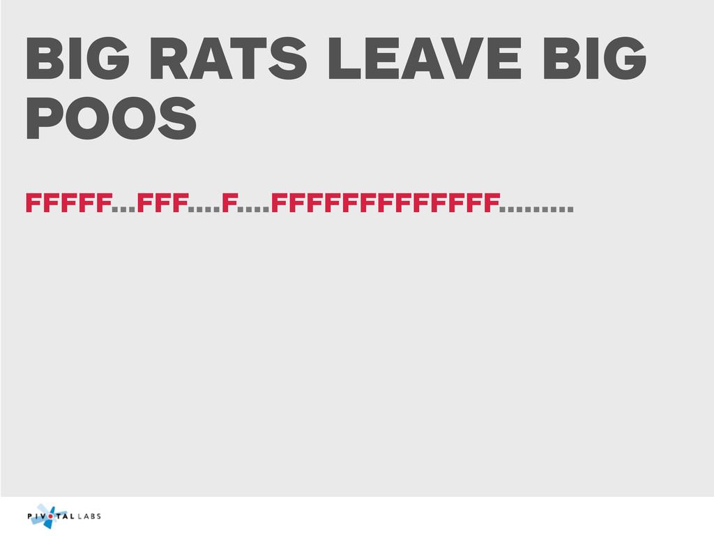 BIG RATS LEAVE BIG POOS FFFFF...FFF....F....FFF...