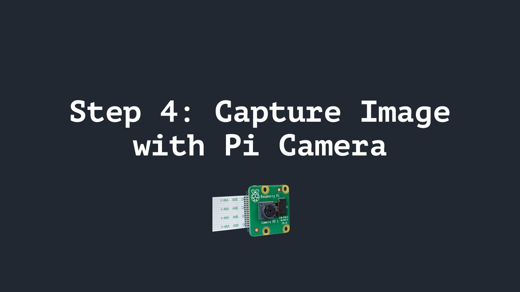 Step 4: Capture Image with Pi Camera