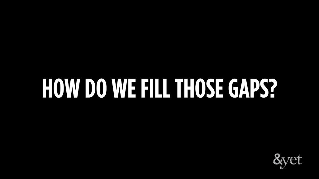 HOW DO WE FILL THOSE GAPS?