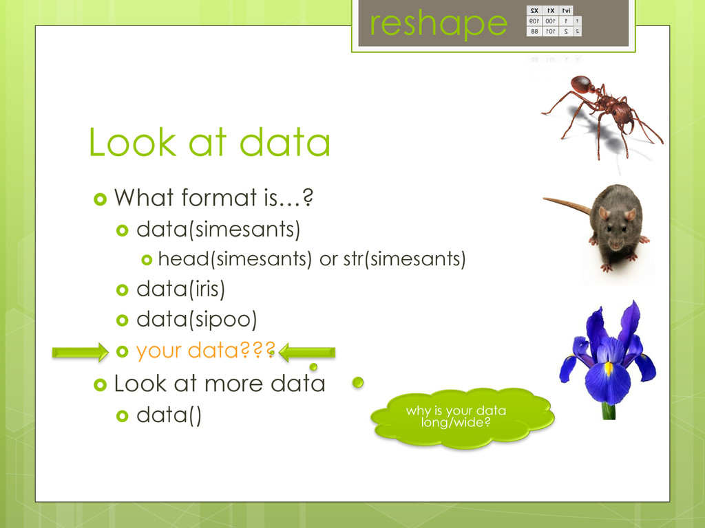 Look at data ›  What format is…? ›  data(sime...