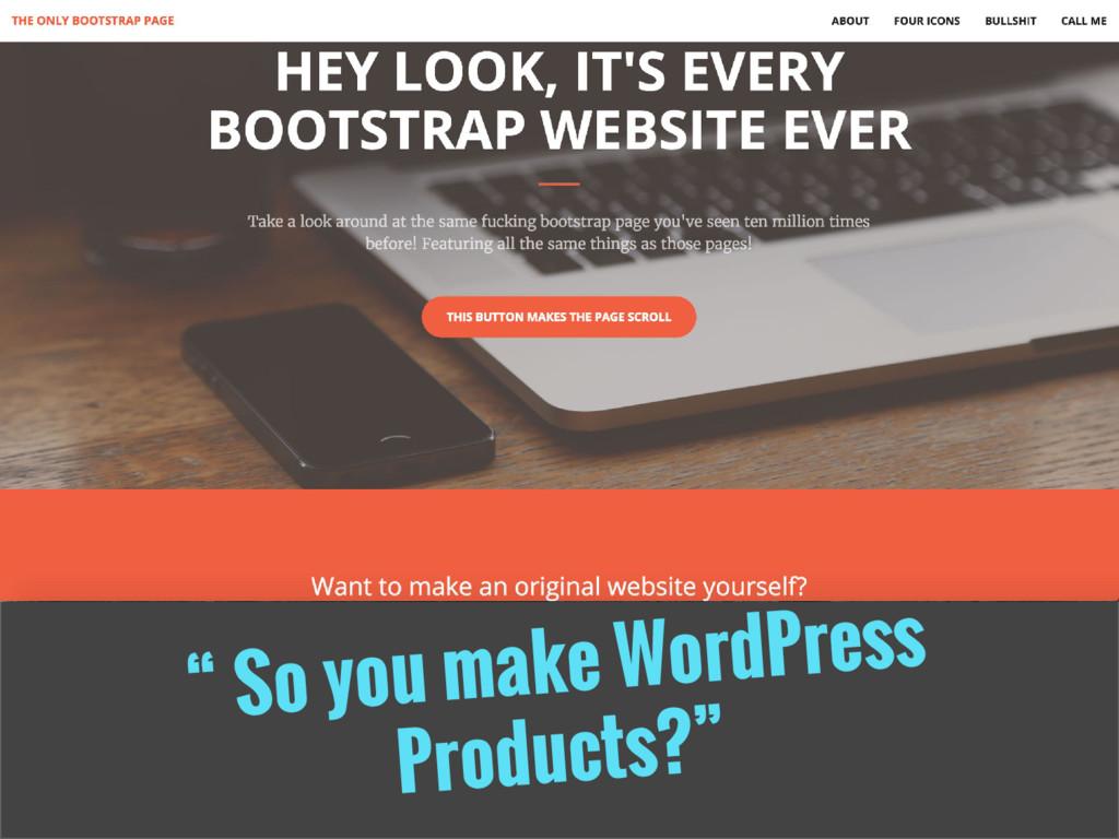 """ So you make WordPress Products?"""