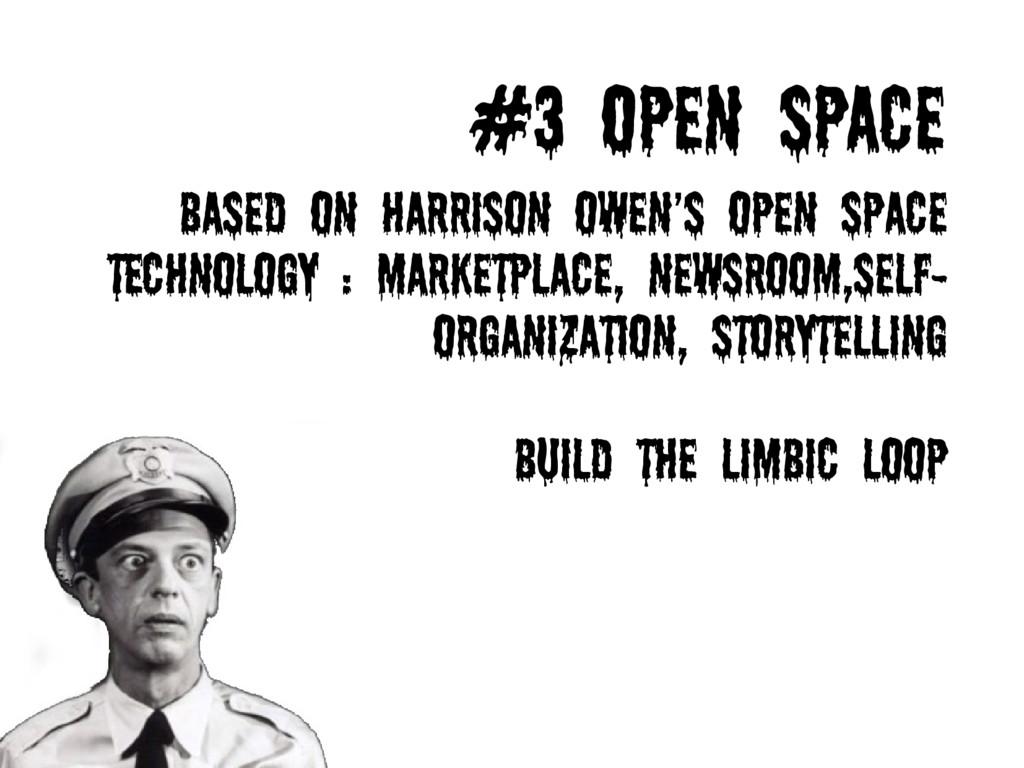 #3 OPEN SPACE Based on harrison owen's Open Spa...