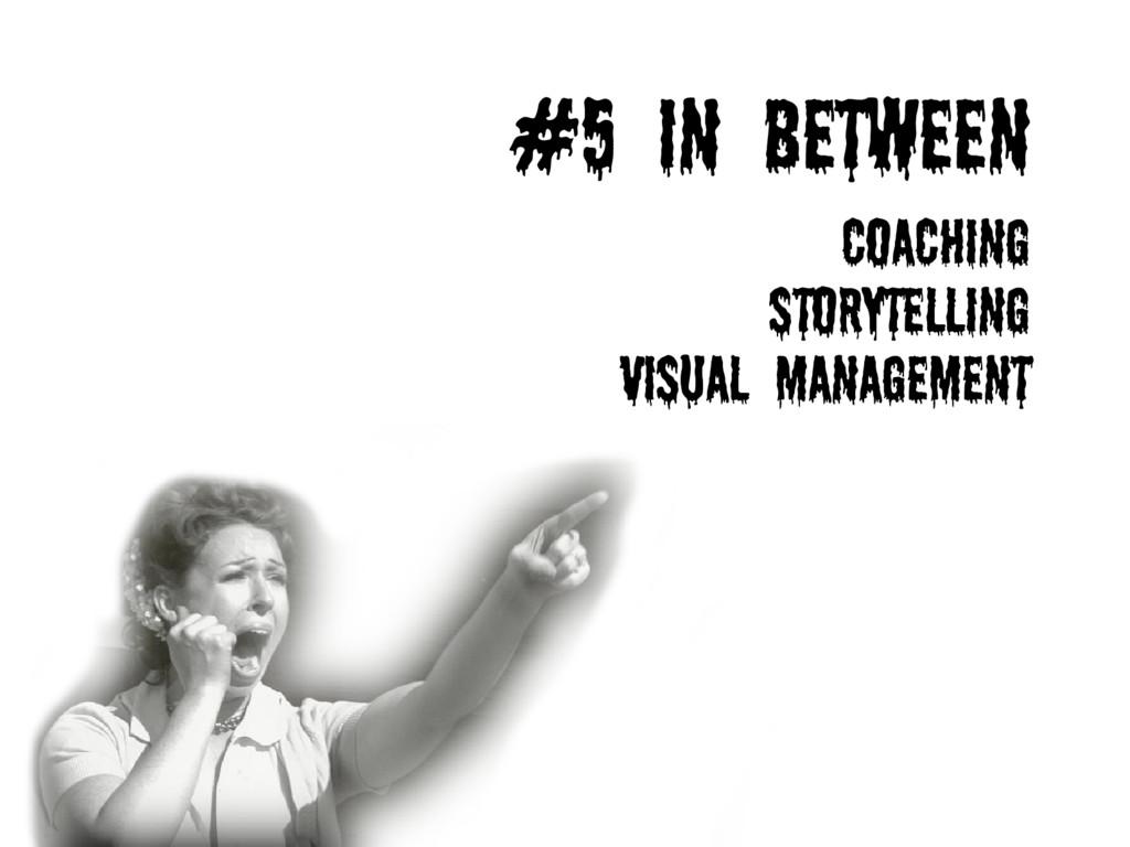 #5 IN BETWEEN Coaching Storytelling Visual Mana...