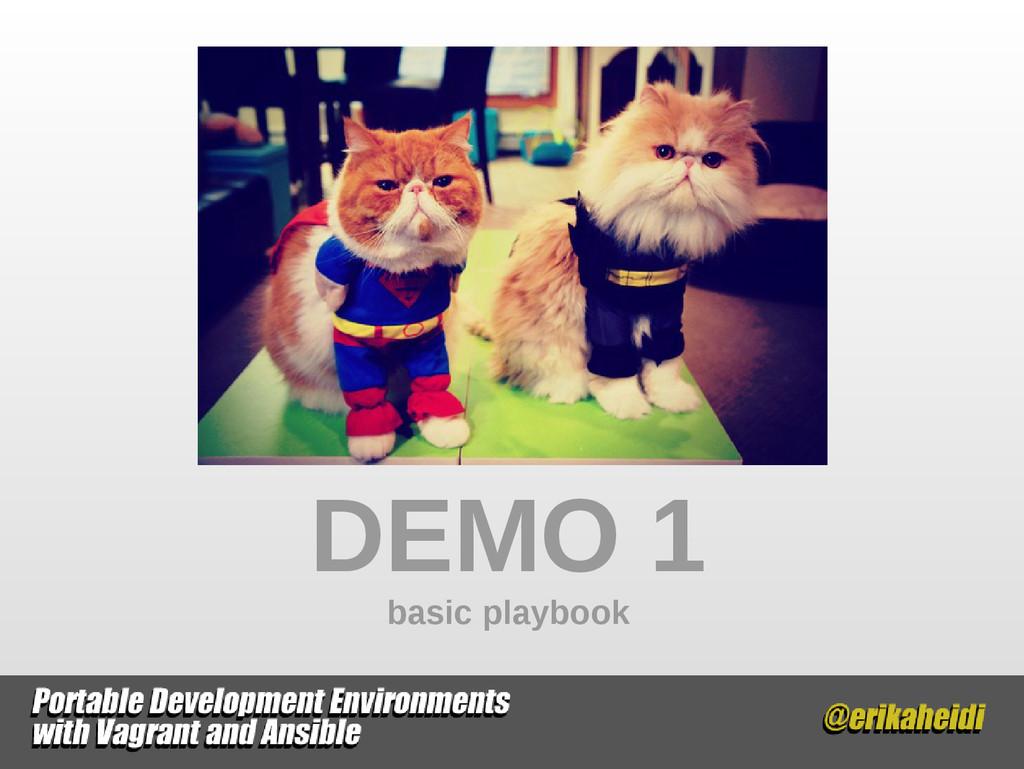 DEMO 1 basic playbook