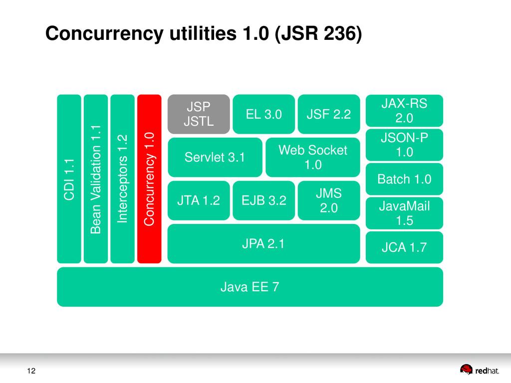 12 JAX-RS 2.0 JSON-P 1.0 Web Socket 1.0 Servlet...