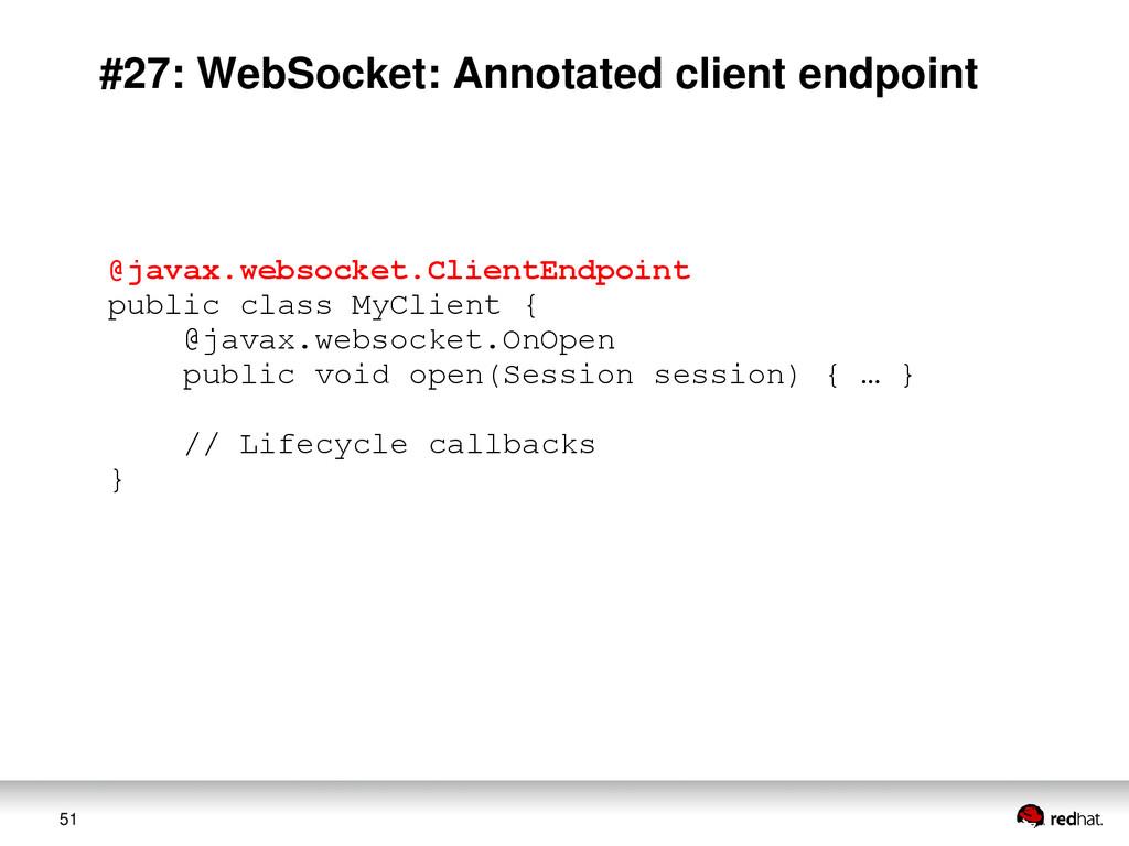 51 #27: WebSocket: Annotated client endpoint @j...