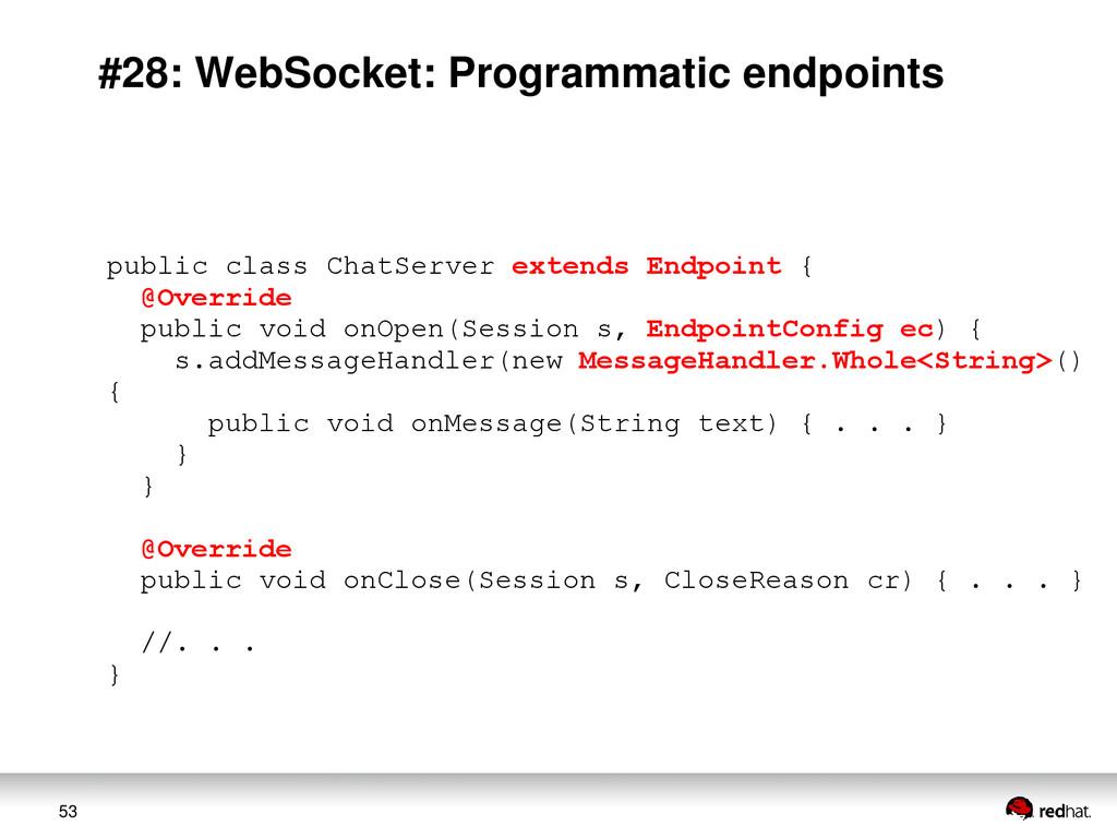 53 #28: WebSocket: Programmatic endpoints publi...