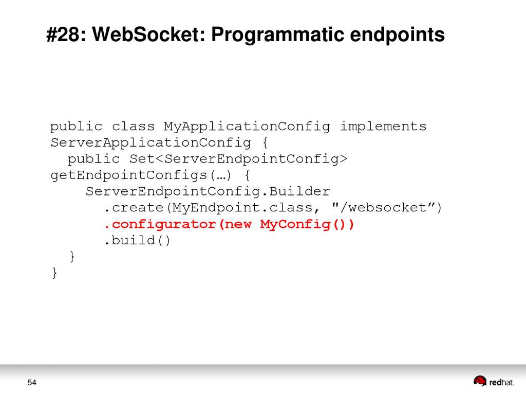 54 #28: WebSocket: Programmatic endpoints publi...