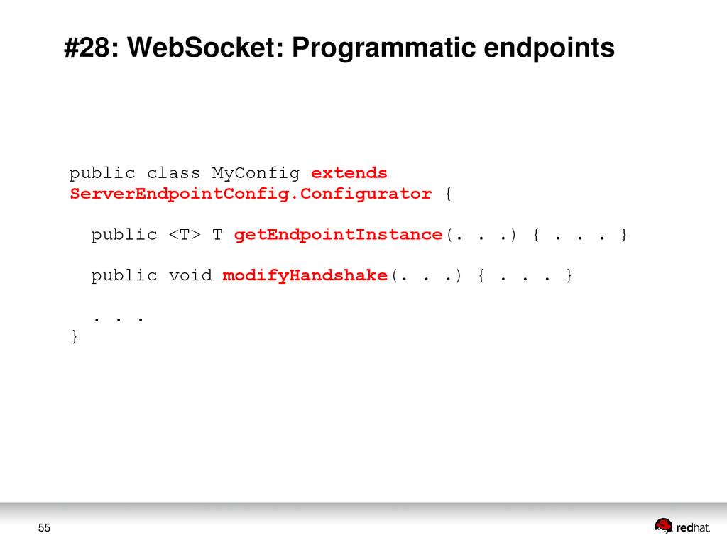 55 #28: WebSocket: Programmatic endpoints publi...