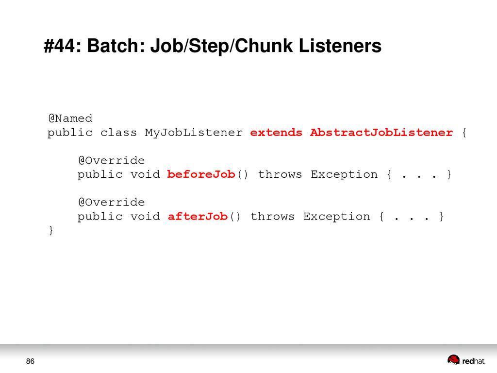 86 #44: Batch: Job/Step/Chunk Listeners @Named ...